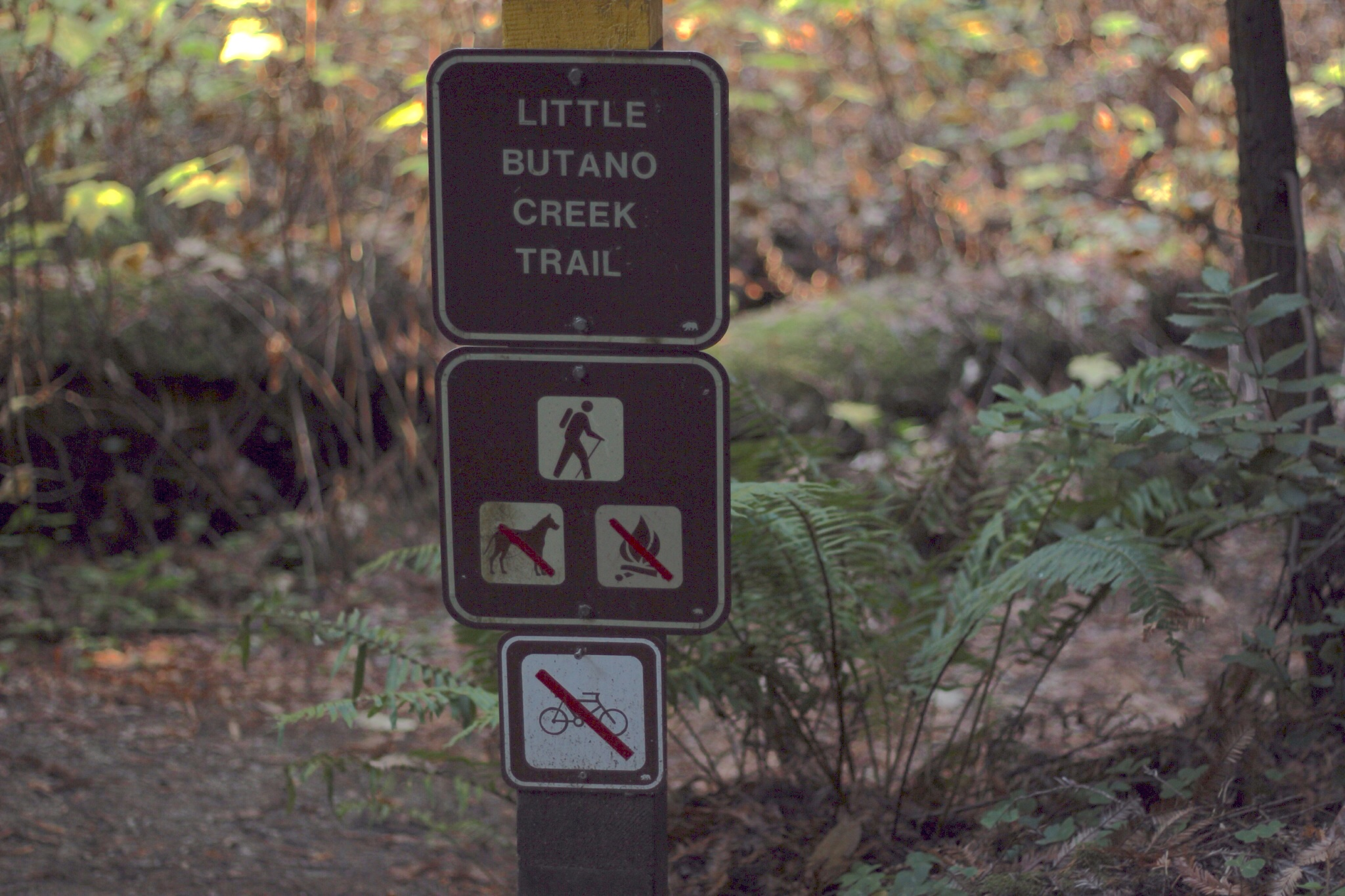Little Butano Creek sign