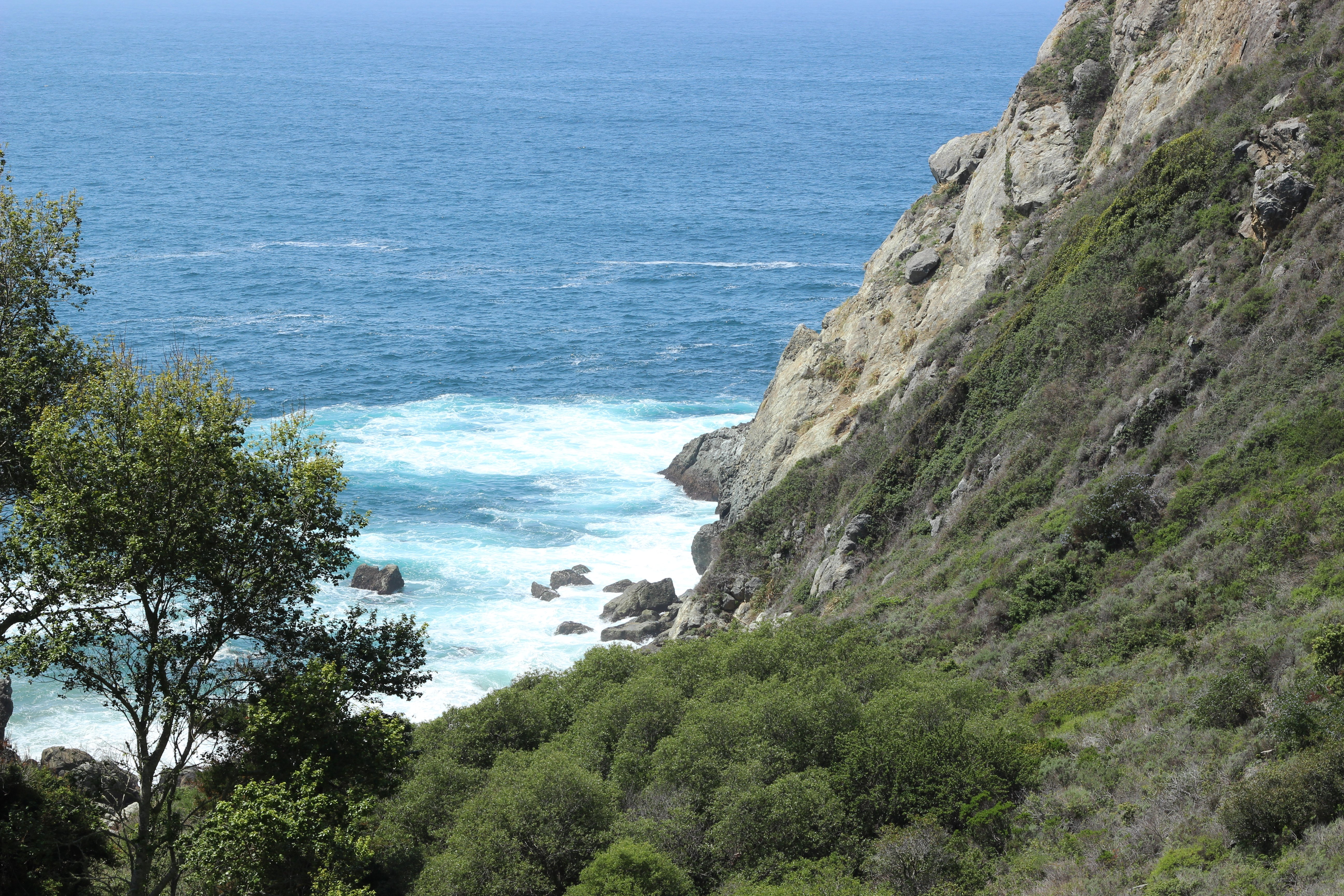 Partington cove from Hwy 1