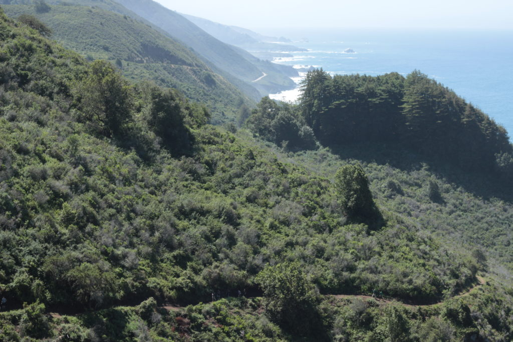 Hiking Vicente Trail, Big Sur
