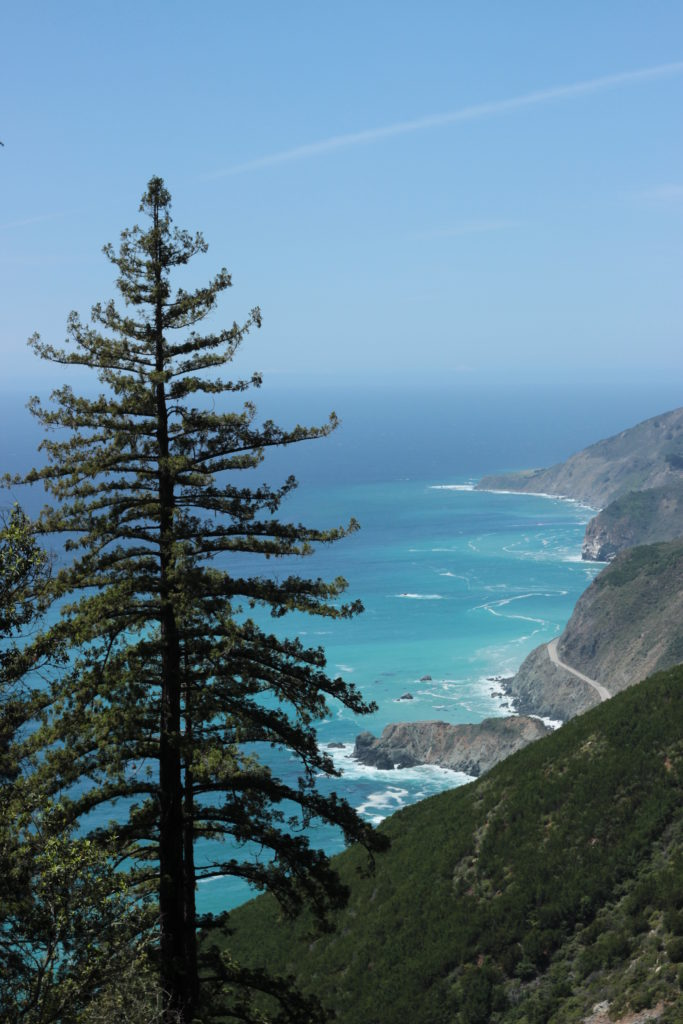 Big Sur coast from Vicente Trail